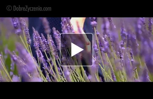 Romantyczne Kartki Video